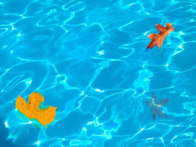 Mantenimiento agua piscina