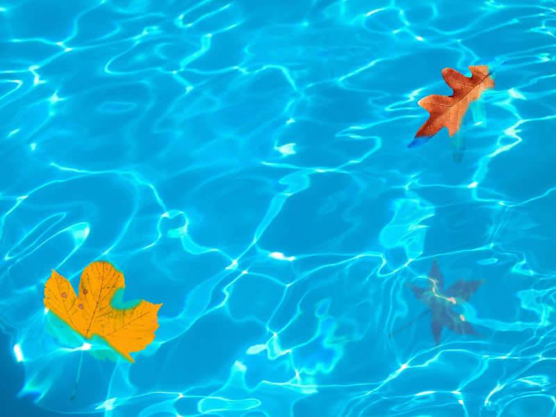 5 Consejos para mantener limpia el agua de tu piscina
